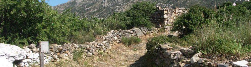naxos2009-004